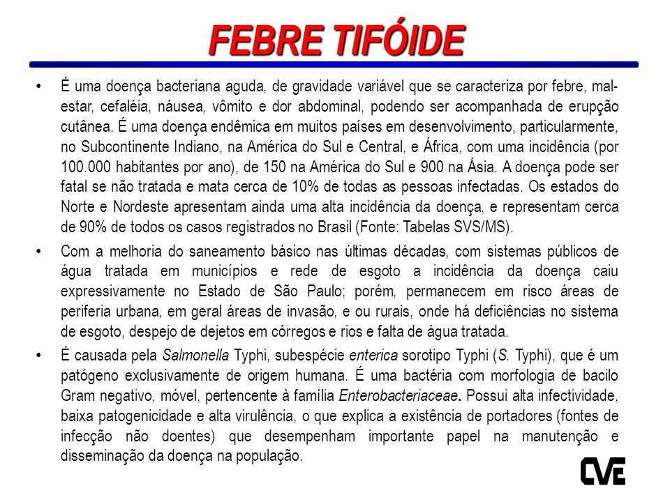 Figura 1 - Febre Tifóide - Casos confirmados autóctones e Coeficientes de Incidência por 100 mil habitantes, Estado de São Paulo, 1960-2010* Fonte: DDTHA/CVE (*) 2010 - Dados ainda não encerrados Pop.:IBGE; em 2010 – Pop.