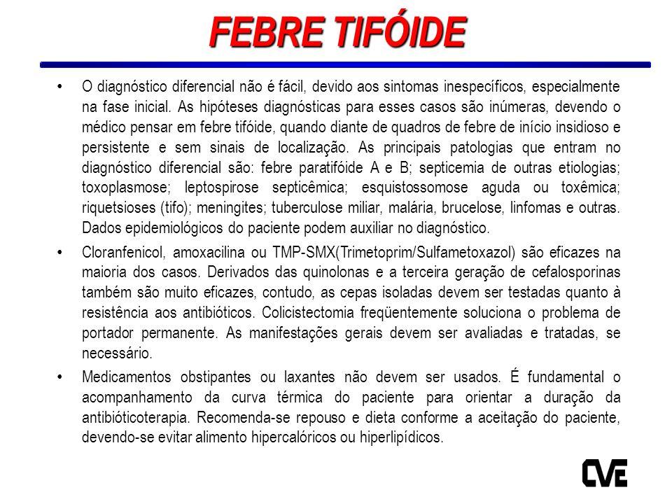 FEBRE TIFÓIDE O diagnóstico diferencial não é fácil, devido aos sintomas inespecíficos, especialmente na fase inicial. As hipóteses diagnósticas para