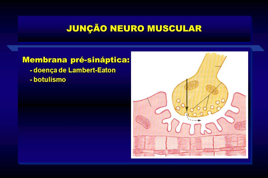 Membrana pré-sináptica: - doença de Lambert-Eaton - doença de Lambert-Eaton - botulismo - botulismo JUNÇÃO NEURO MUSCULAR