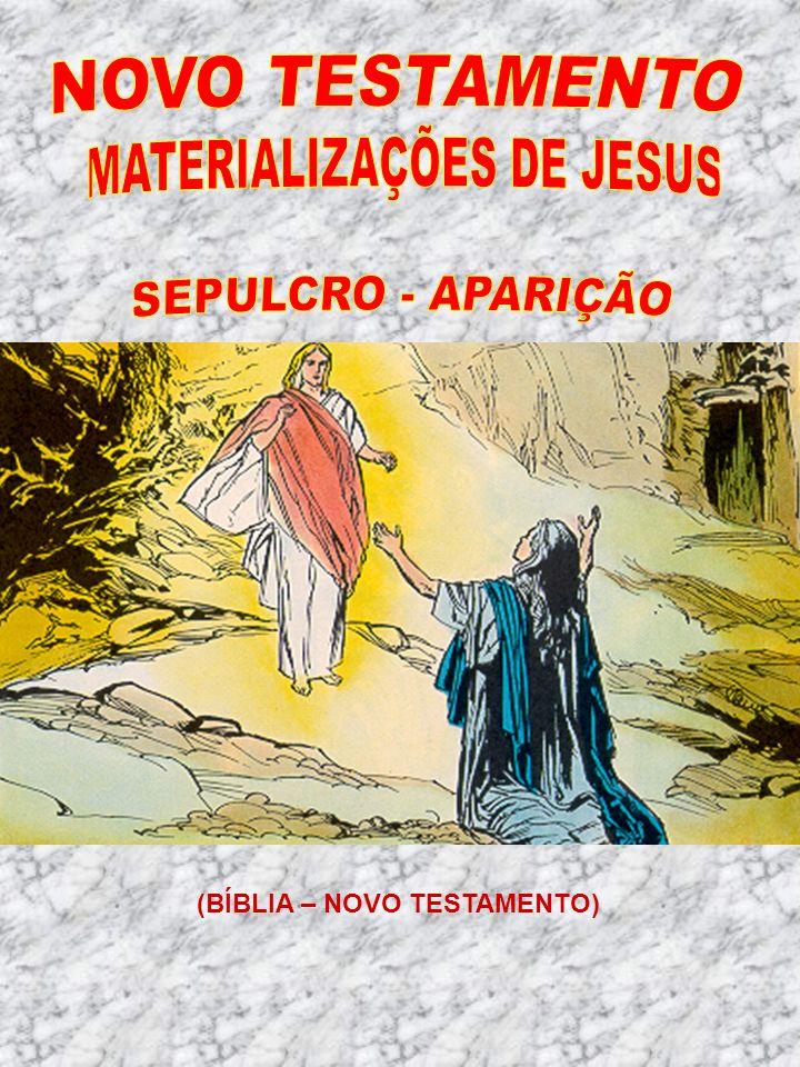 (BÍBLIA – NOVO TESTAMENTO)