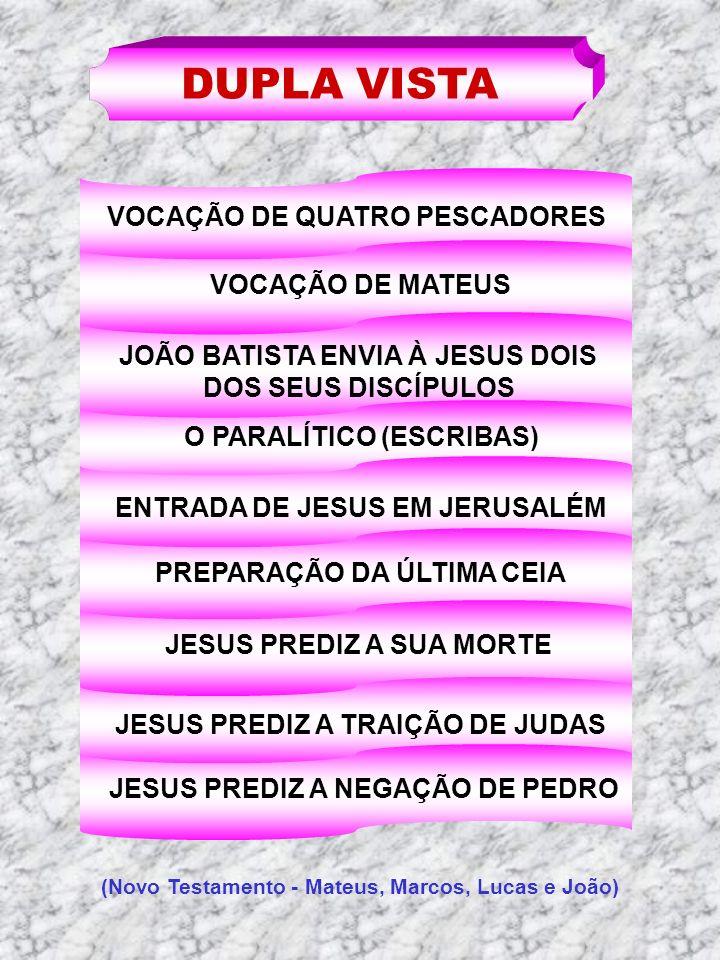 DUPLA VISTA VOCAÇÃO DE QUATRO PESCADORES VOCAÇÃO DE MATEUS JOÃO BATISTA ENVIA À JESUS DOIS DOS SEUS DISCÍPULOS O PARALÍTICO (ESCRIBAS) ENTRADA DE JESU
