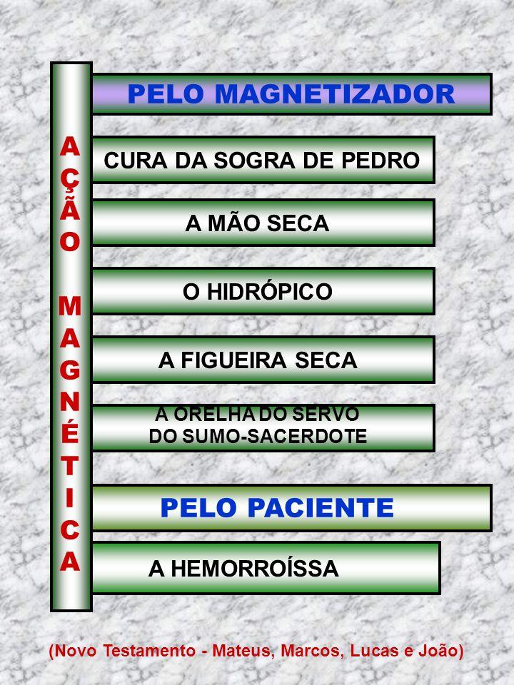 PELO MAGNETIZADOR CURA DA SOGRA DE PEDRO PELO PACIENTE A HEMORROÍSSA AÇÃOMAGNÉTICAAÇÃOMAGNÉTICA A MÃO SECA O HIDRÓPICO A FIGUEIRA SECA A ORELHA DO SER
