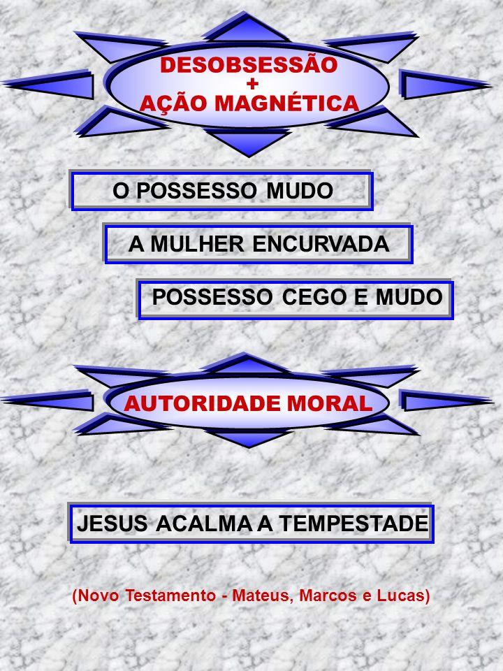 DESOBSESSÃO + AÇÃO MAGNÉTICA O POSSESSO MUDO A MULHER ENCURVADA AUTORIDADE MORAL JESUS ACALMA A TEMPESTADE (Novo Testamento - Mateus, Marcos e Lucas)