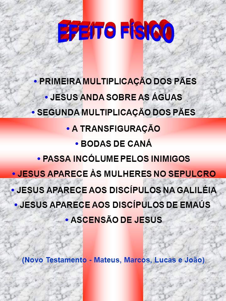 PRIMEIRA MULTIPLICAÇÃO DOS PÃES JESUS ANDA SOBRE AS ÁGUAS SEGUNDA MULTIPLICAÇÃO DOS PÃES A TRANSFIGURAÇÃO BODAS DE CANÁ PASSA INCÓLUME PELOS INIMIGOS