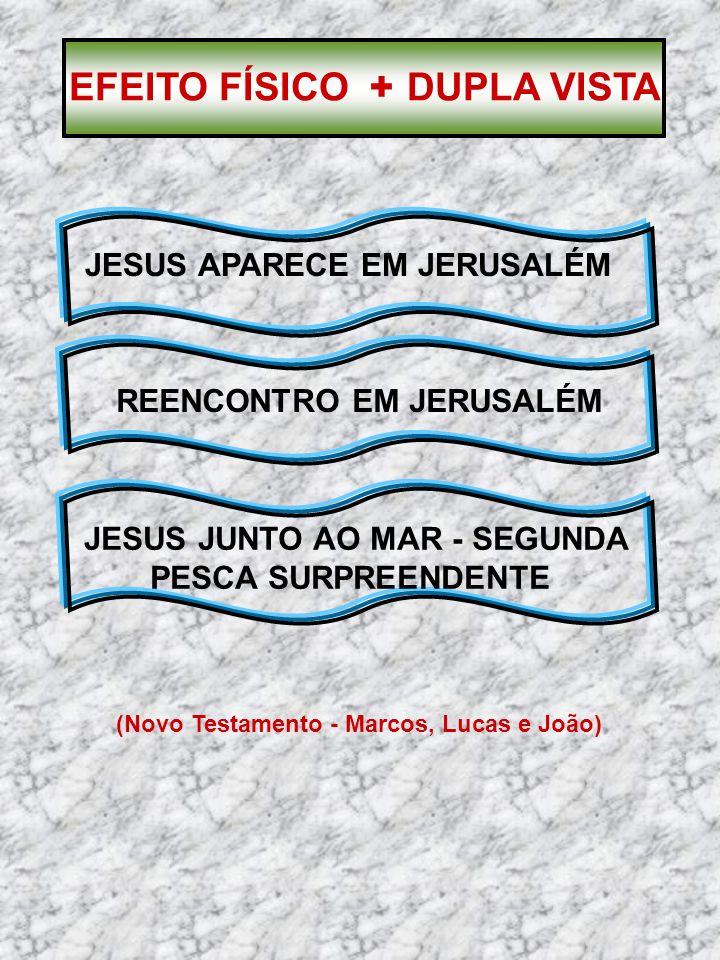 (Novo Testamento - Marcos, Lucas e João) JESUS APARECE EM JERUSALÉM REENCONTRO EM JERUSALÉM JESUS JUNTO AO MAR - SEGUNDA PESCA SURPREENDENTE EFEITO FÍ