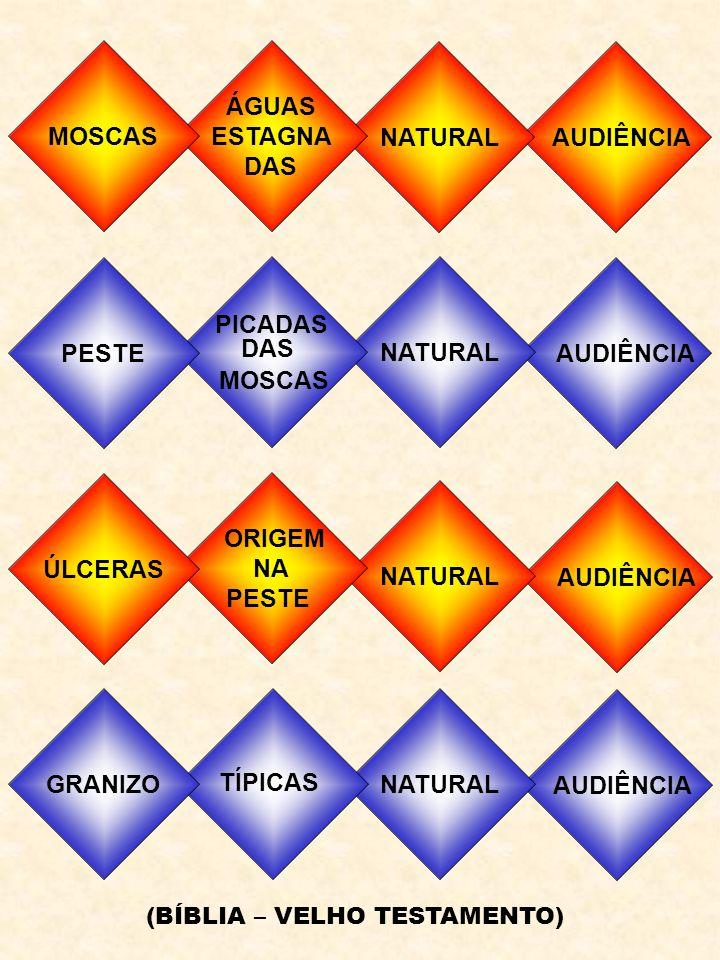 MINISTÉRIO DE PAULO E BARNABÉ PAULO E BARNABÉ - ANTIOQUIA O APÓSTOLO DOS GENTIOS 45 d.C 1ª VIAGEM - PAULO - BARNABÉ - MARCOS CHIPRE CASA DO PROCÔNSUL MAGO - CEGUEIRA PANFÍLIA MARCOS VOLTA PARA JERUSALÉM ANT.PISÍDIA BOA RECEPÇÃO INVEJA - EXPULSOS LISTRA CURA DO ALEIJADO ENDEUSADOS - PEDRADAS FIM DA 1ª VIAGEM