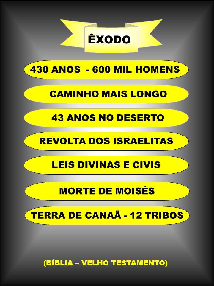 430 ANOS - 600 MIL HOMENS REVOLTA DOS ISRAELITAS LEIS DIVINAS E CIVIS ÊXODO CAMINHO MAIS LONGO 43 ANOS NO DESERTO MORTE DE MOISÉS TERRA DE CANAÃ - 12