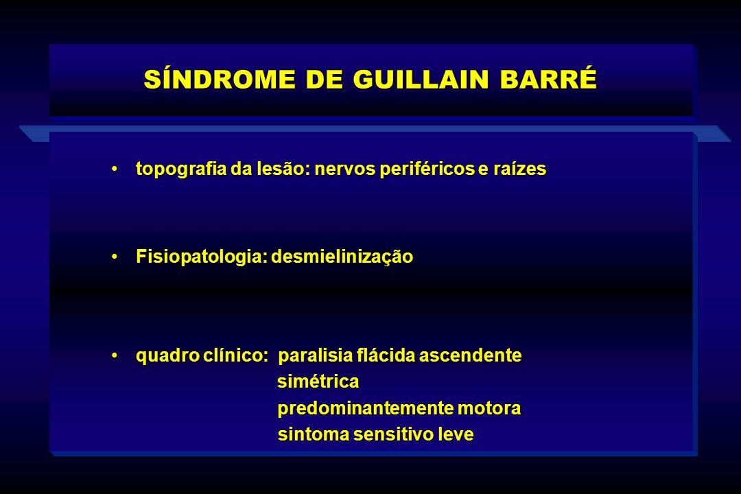 SÍNDROME DE GUILLAIN BARRÉ quadro clínico: paralisia flácida ascendentequadro clínico: paralisia flácida ascendente simétrica simétrica predominanteme