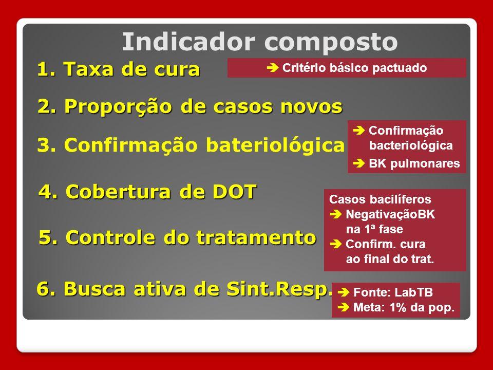 3. Confirmação bateriológica Indicador composto 6.