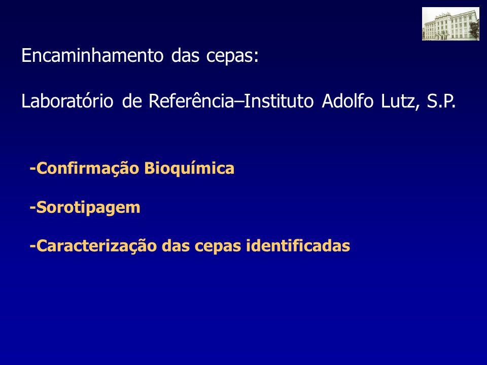 -Confirmação Bioquímica -Sorotipagem -Caracterização das cepas identificadas Encaminhamento das cepas: Laboratório de Referência–Instituto Adolfo Lutz