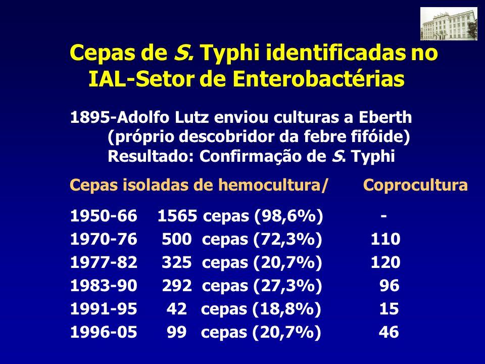 1895-Adolfo Lutz enviou culturas a Eberth (próprio descobridor da febre fifóide) Resultado: Confirmação de S. Typhi Cepas isoladas de hemocultura/ Cop
