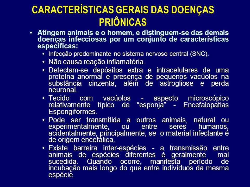 CARACTERÍSTICAS GERAIS DAS DOENÇAS PRIÔNICAS Atingem animais e o homem, e distinguem-se das demais doenças infecciosas por um conjunto de características específicas: Infecção predominante no sistema nervoso central (SNC).