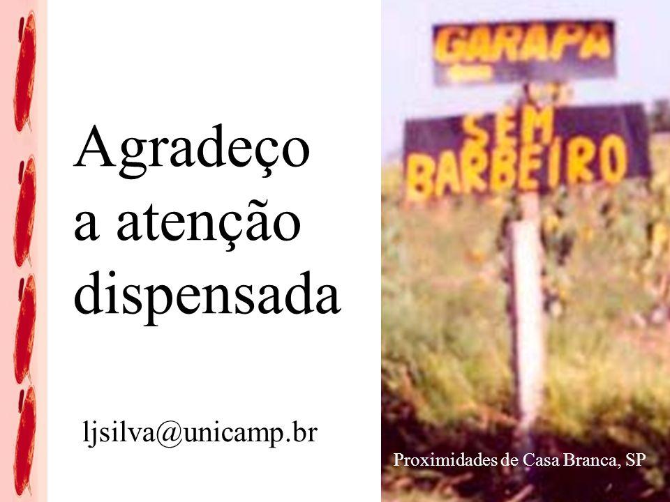 Agradeço a atenção dispensada Proximidades de Casa Branca, SP ljsilva@unicamp.br