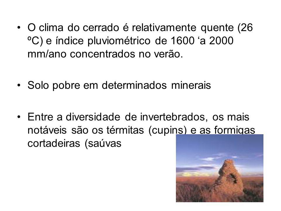 O clima do cerrado é relativamente quente (26 ºC) e índice pluviométrico de 1600 a 2000 mm/ano concentrados no verão.