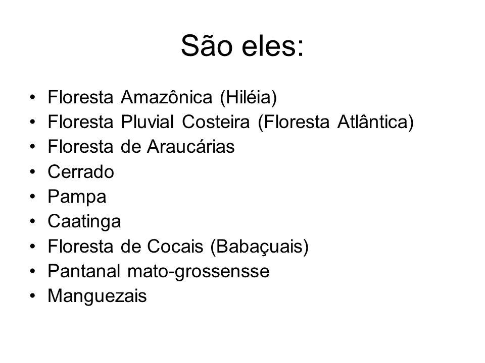 São eles: Floresta Amazônica (Hiléia) Floresta Pluvial Costeira (Floresta Atlântica) Floresta de Araucárias Cerrado Pampa Caatinga Floresta de Cocais (Babaçuais) Pantanal mato-grossensse Manguezais