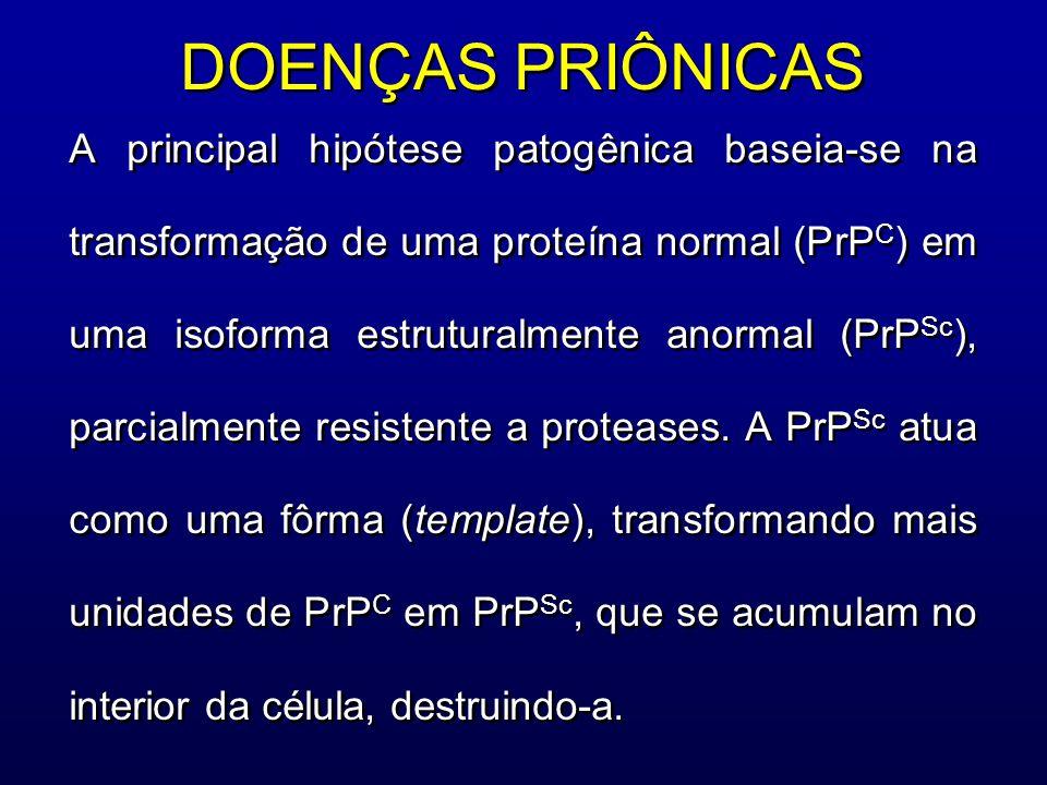 DOENÇAS PRIÔNICAS A principal hipótese patogênica baseia-se na transformação de uma proteína normal (PrP C ) em uma isoforma estruturalmente anormal (