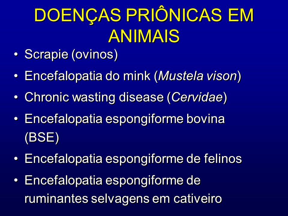 DOENÇAS PRIÔNICAS EM ANIMAIS Scrapie (ovinos) Encefalopatia do mink (Mustela vison) Chronic wasting disease (Cervidae) Encefalopatia espongiforme bovi