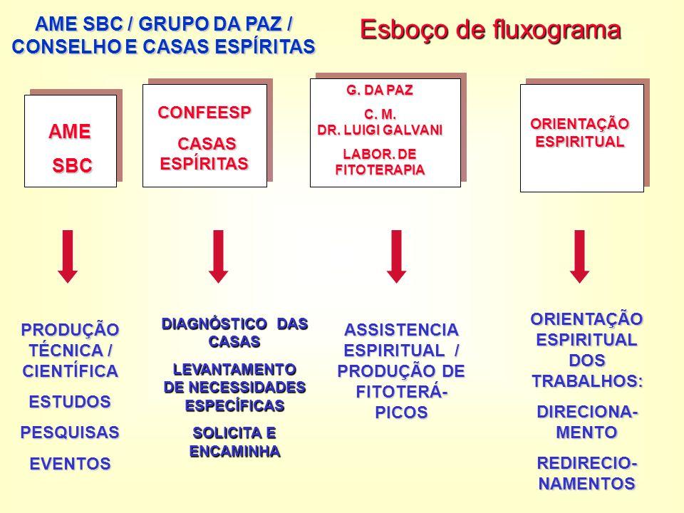 Esboço de fluxograma AME SBC / GRUPO DA PAZ / CONSELHO E CASAS ESPÍRITAS AME SBC SBC CONFEESP CASAS ESPÍRITAS CASAS ESPÍRITAS G.