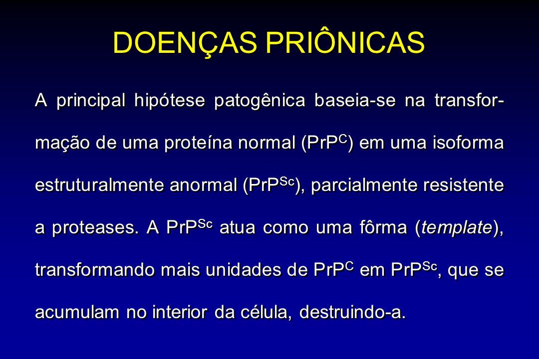 DOENÇAS PRIÔNICAS A principal hipótese patogênica baseia-se na transfor- mação de uma proteína normal (PrP C ) em uma isoforma estruturalmente anormal (PrP Sc ), parcialmente resistente a proteases.