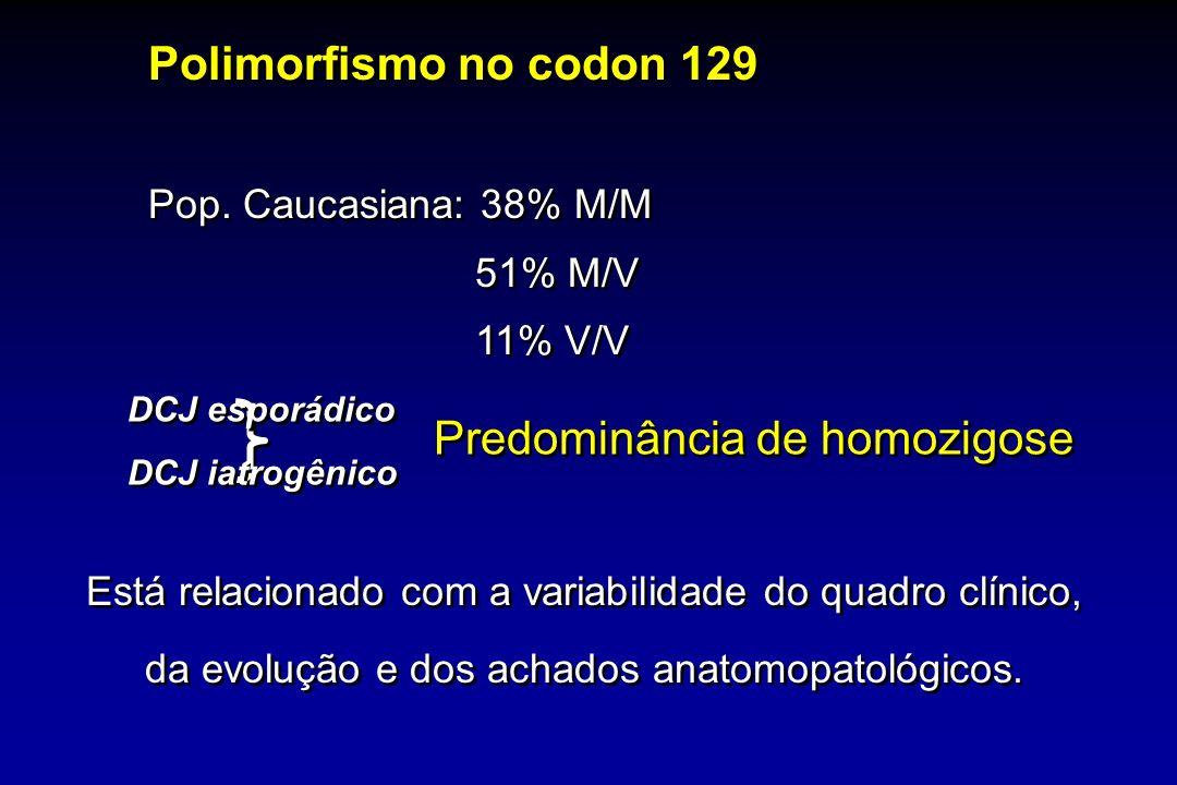 Predominância de homozigose Está relacionado com a variabilidade do quadro clínico, da evolução e dos achados anatomopatológicos. Polimorfismo no codo
