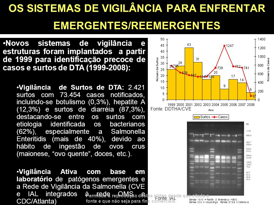 OS SISTEMAS DE VIGILÂNCIA PARA ENFRENTAR EMERGENTES/REEMERGENTES Novos sistemas de vigilância e estruturas foram implantados a partir de 1999 para ide