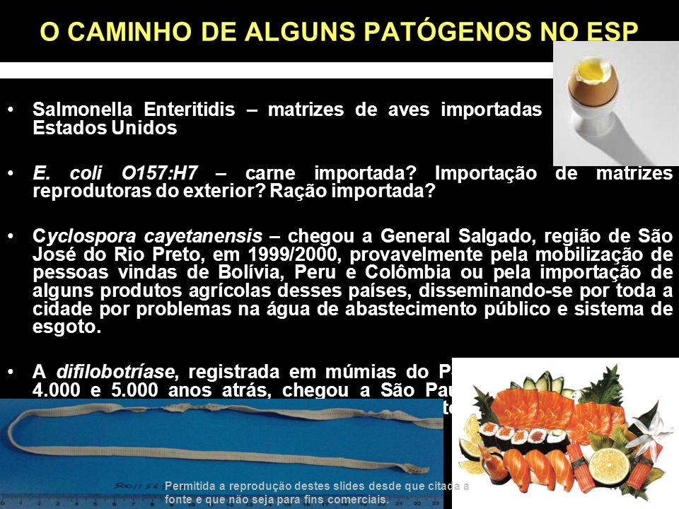 O CAMINHO DE ALGUNS PATÓGENOS NO ESP Salmonella Enteritidis – matrizes de aves importadas da Europa e Estados Unidos E. coli O157:H7 – carne importada