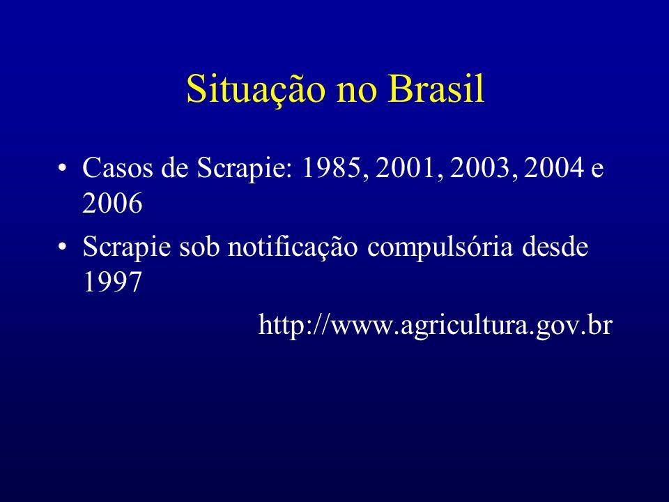 Situação no Brasil Casos de Scrapie: 1985, 2001, 2003, 2004 e 2006 Scrapie sob notificação compulsória desde 1997 http://www.agricultura.gov.br
