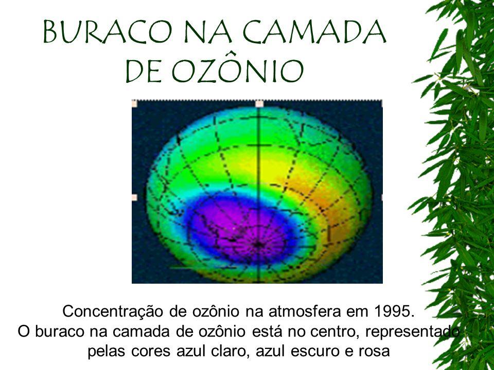 BURACO NA CAMADA DE OZÔNIO Concentração de ozônio na atmosfera em 1995. O buraco na camada de ozônio está no centro, representado pelas cores azul cla
