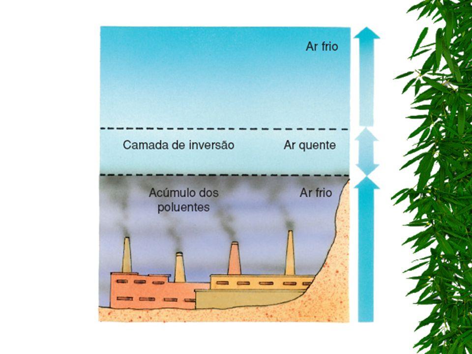 EFEITO ESTUFA A elevação considerável da taxa de CO 2 e outros gases na atmosfera provoca o chamado efeito estufa, que consiste na retenção de calor do Sol na atmosfera.