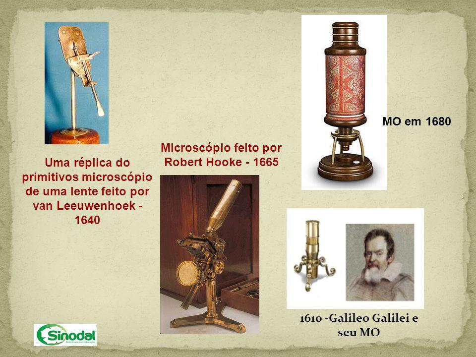 Robert Hooke: 1665 – Inglaterra Usa, pela primeira vez, o termo CÉLULA, derivado do latim: cella=cela, pequeno compartimento.