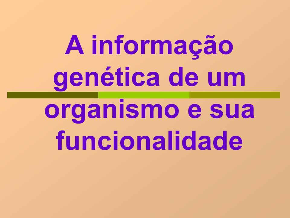A informação genética de um organismo e sua funcionalidade