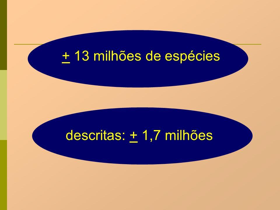 Células haplóides e diplóides Haplóides = n cromossomos Ex: gametas Diplóides = 2n cromossomos Ex: somáticas
