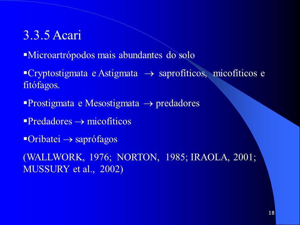 18 3.3.5 Acari Microartrópodos mais abundantes do solo Cryptostigmata e Astigmata saprofíticos, micofíticos e fitófagos. Prostigmata e Mesostigmata pr