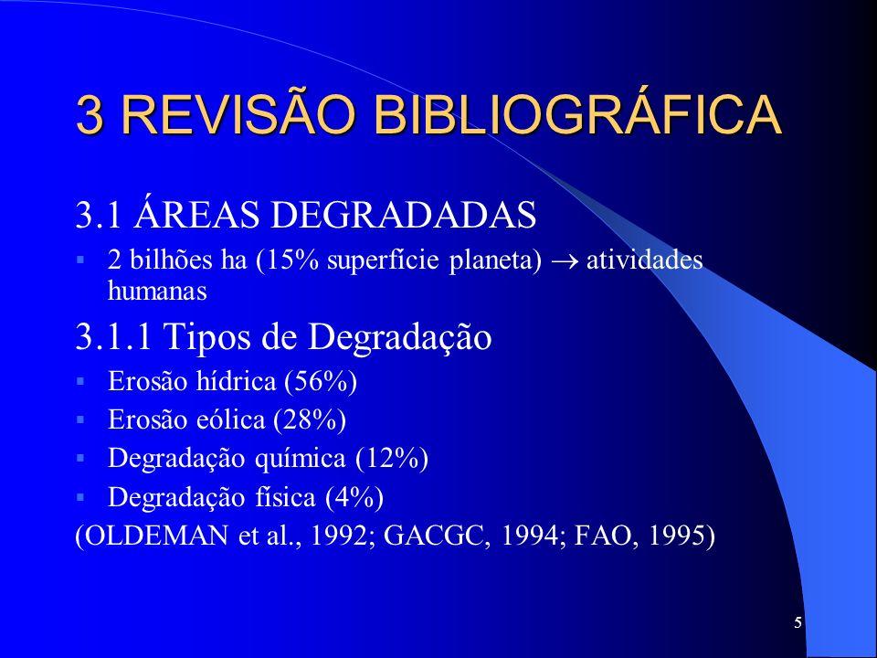 5 3 REVISÃO BIBLIOGRÁFICA 3.1 ÁREAS DEGRADADAS 2 bilhões ha (15% superfície planeta) atividades humanas 3.1.1 Tipos de Degradação Erosão hídrica (56%)