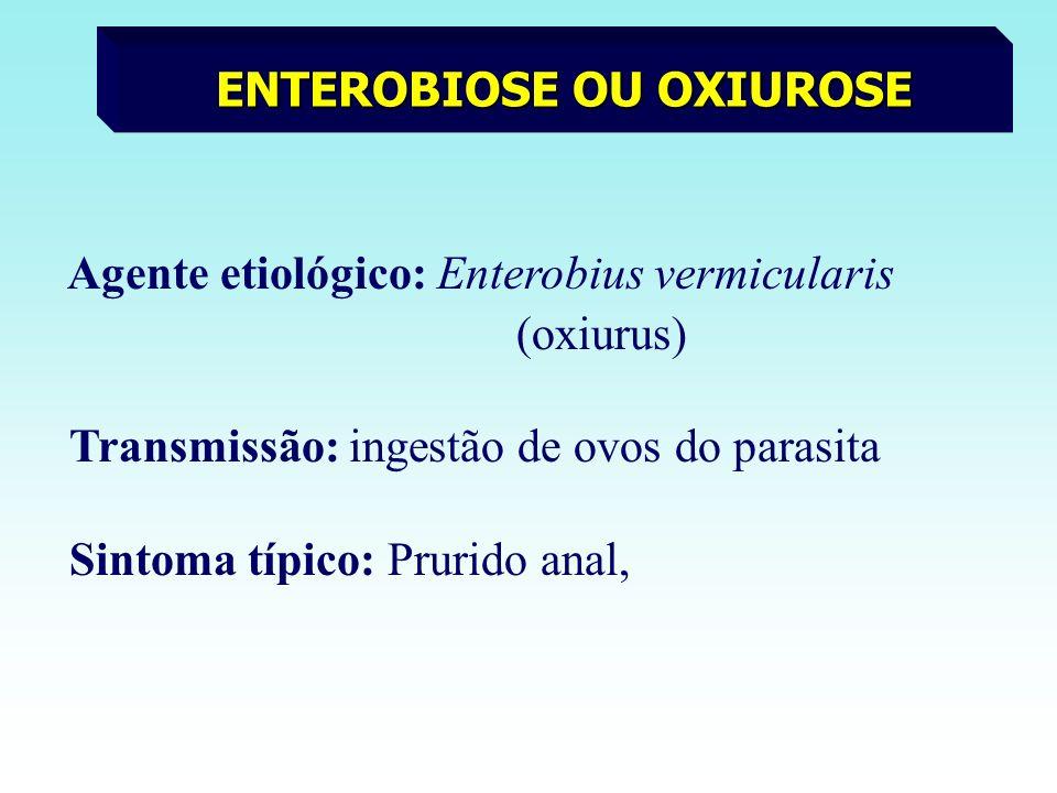 ENTEROBIOSE OU OXIUROSE Agente etiológico: Enterobius vermicularis (oxiurus) Transmissão: ingestão de ovos do parasita Sintoma típico: Prurido anal,