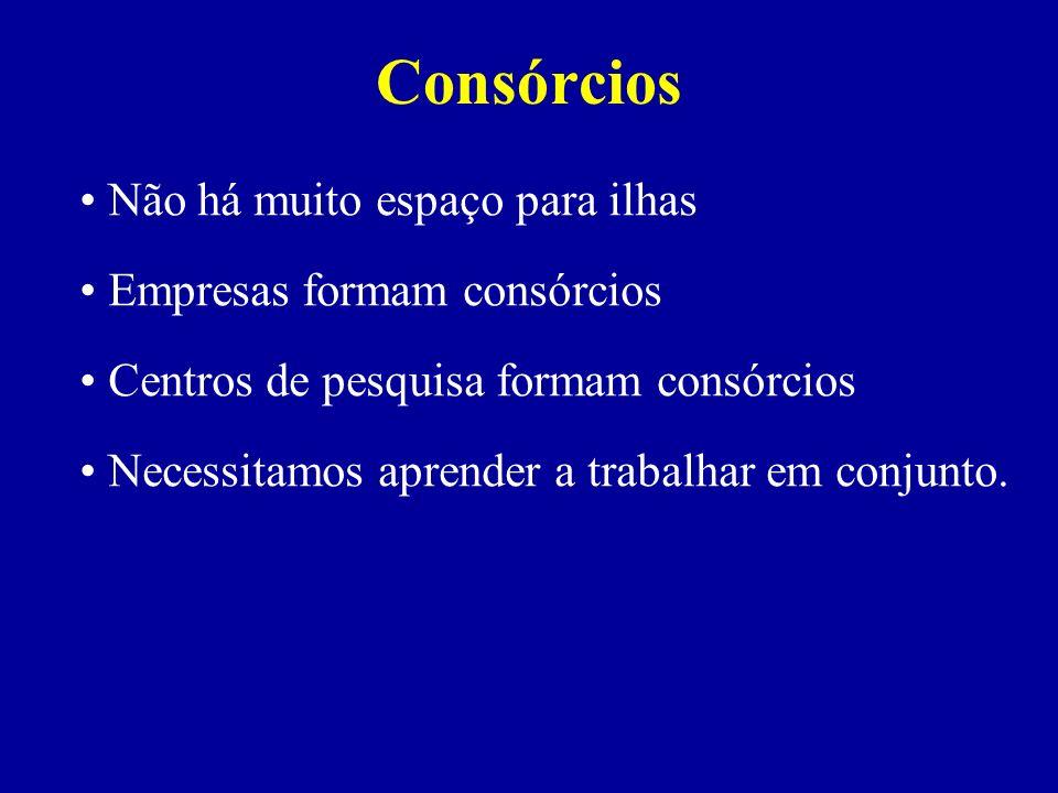 Consórcios Não há muito espaço para ilhas Empresas formam consórcios Centros de pesquisa formam consórcios Necessitamos aprender a trabalhar em conjun