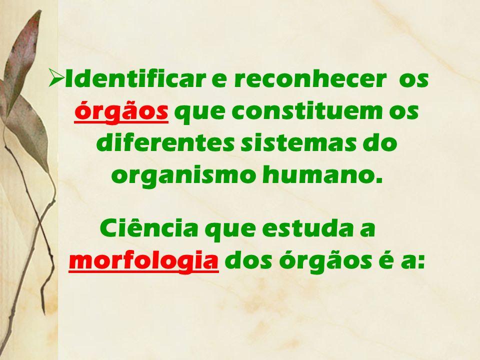 Identificar e reconhecer os órgãos que constituem os diferentes sistemas do organismo humano. Ciência que estuda a morfologia dos órgãos é a: