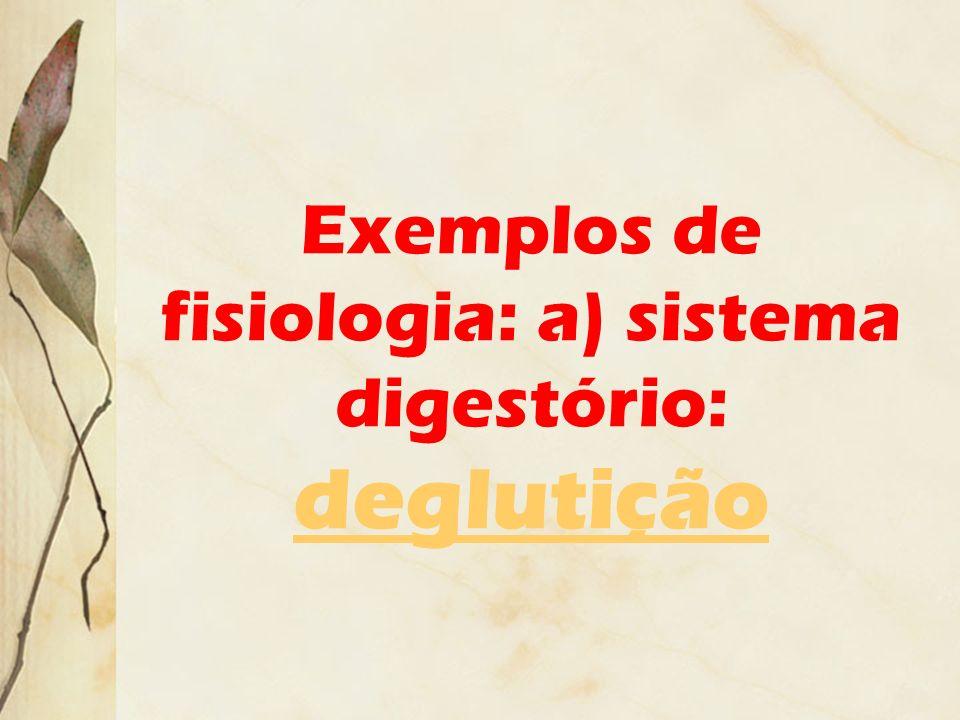 Exemplos de fisiologia: a) sistema digestório: deglutição deglutição