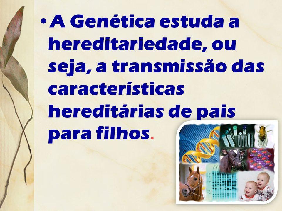A Genética estuda a hereditariedade, ou seja, a transmissão das características hereditárias de pais para filhos.