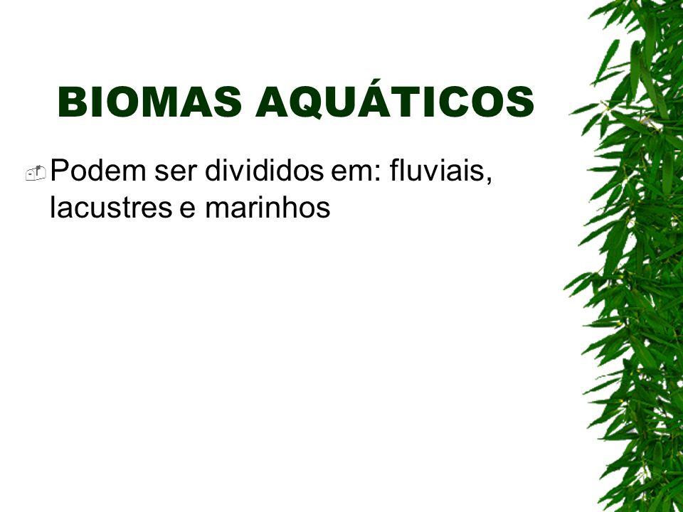 BIOMAS AQUÁTICOS Podem ser divididos em: fluviais, lacustres e marinhos