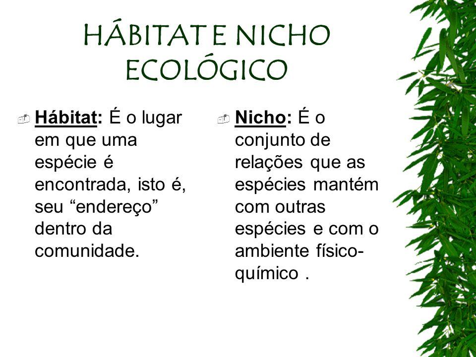HÁBITAT E NICHO ECOLÓGICO Hábitat: É o lugar em que uma espécie é encontrada, isto é, seu endereço dentro da comunidade. Nicho: É o conjunto de relaçõ