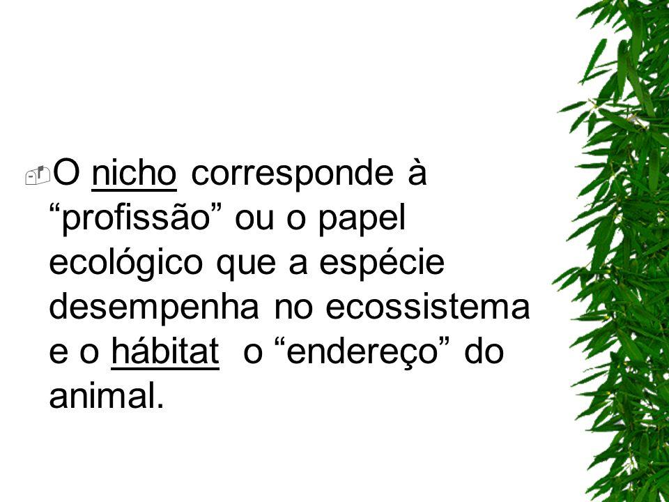 O nicho corresponde à profissão ou o papel ecológico que a espécie desempenha no ecossistema e o hábitat o endereço do animal.