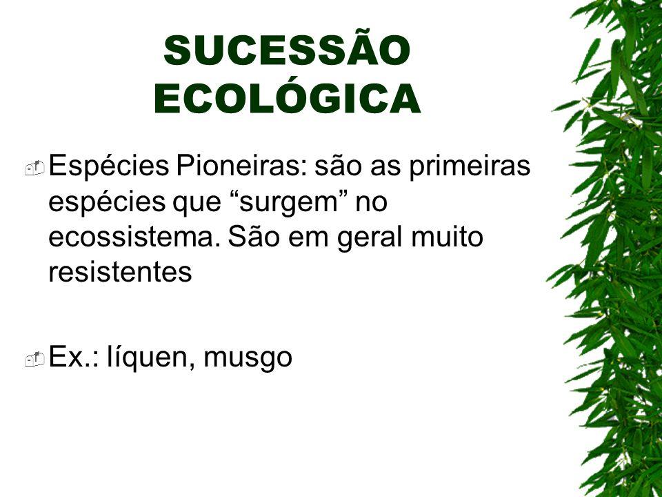 SUCESSÃO ECOLÓGICA Espécies Pioneiras: são as primeiras espécies que surgem no ecossistema. São em geral muito resistentes Ex.: líquen, musgo