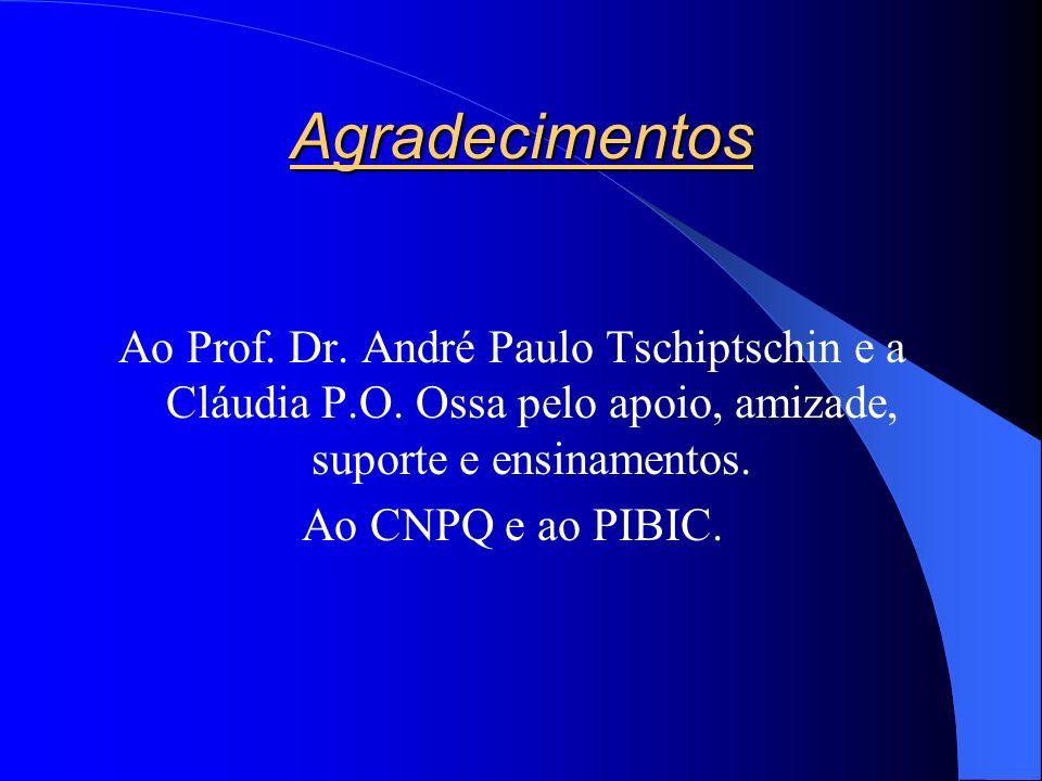 Agradecimentos Ao Prof.Dr. André Paulo Tschiptschin e a Cláudia P.O.