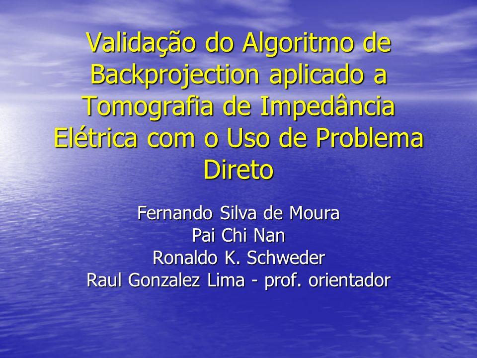 Validação do Algoritmo de Backprojection aplicado a Tomografia de Impedância Elétrica com o Uso de Problema Direto Fernando Silva de Moura Pai Chi Nan
