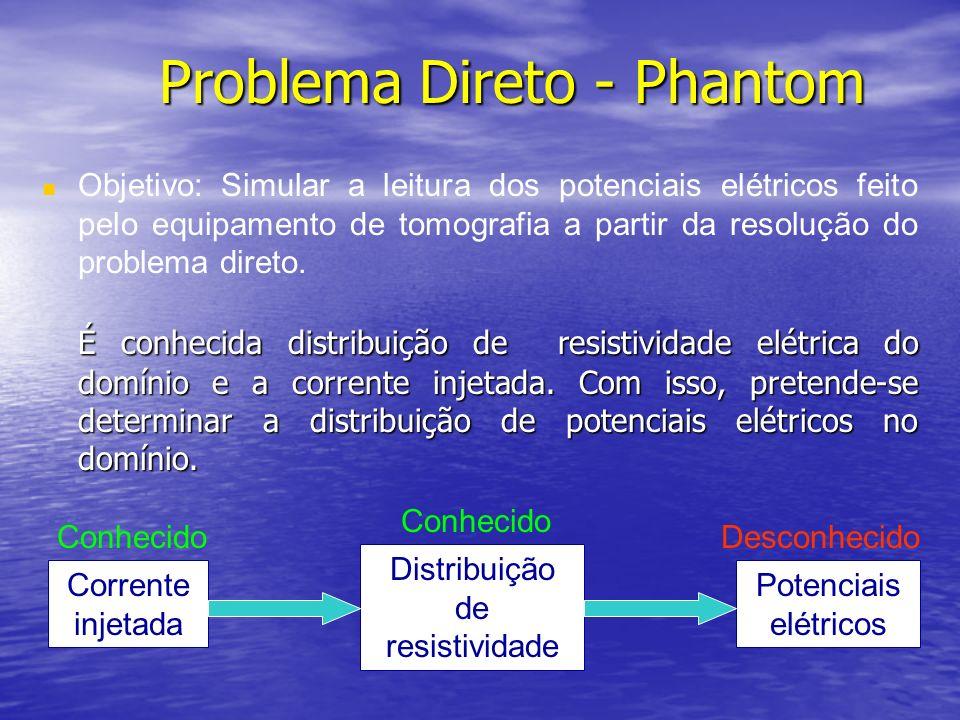 Problema Direto - Phantom É conhecida distribuição de resistividade elétrica do domínio e a corrente injetada. Com isso, pretende-se determinar a dist