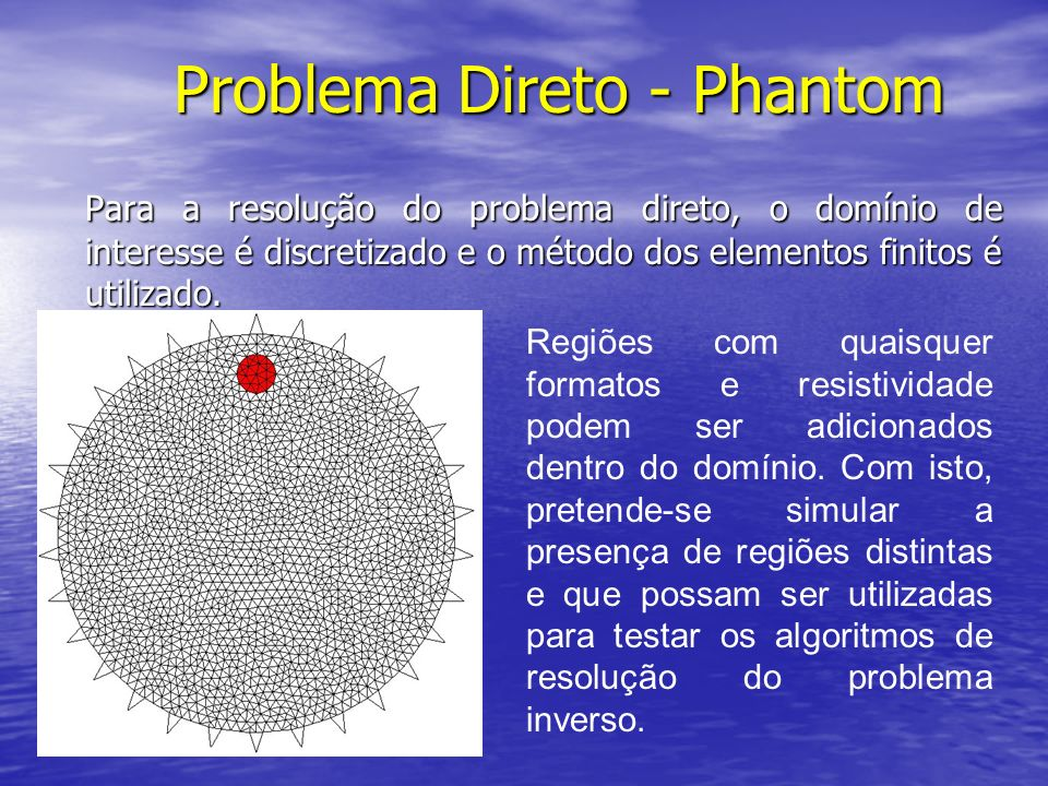 Problema Direto - Phantom Para a resolução do problema direto, o domínio de interesse é discretizado e o método dos elementos finitos é utilizado. Reg
