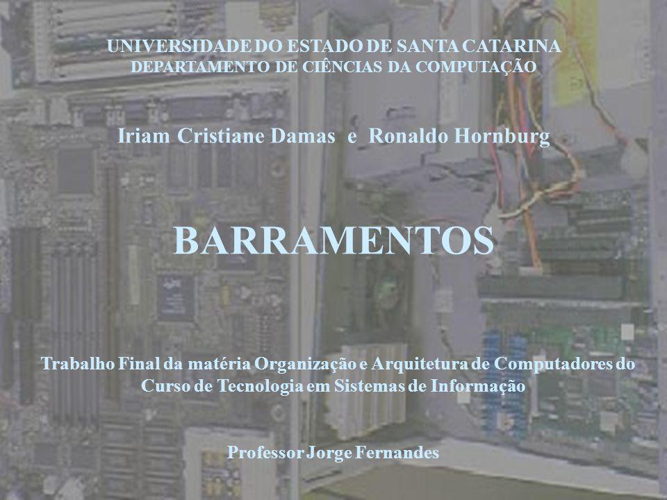 UNIVERSIDADE DO ESTADO DE SANTA CATARINA DEPARTAMENTO DE CIÊNCIAS DA COMPUTAÇÃO Iriam Cristiane Damas e Ronaldo Hornburg BARRAMENTOS Trabalho Final da