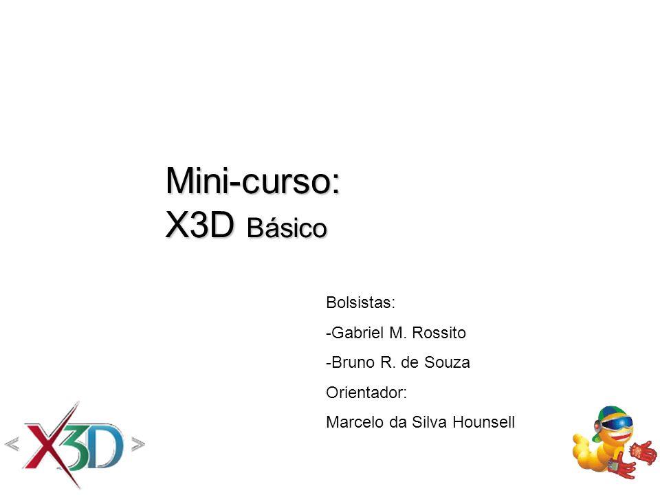 Mini-curso: X3D Básico Bolsistas: -Gabriel M. Rossito -Bruno R. de Souza Orientador: Marcelo da Silva Hounsell
