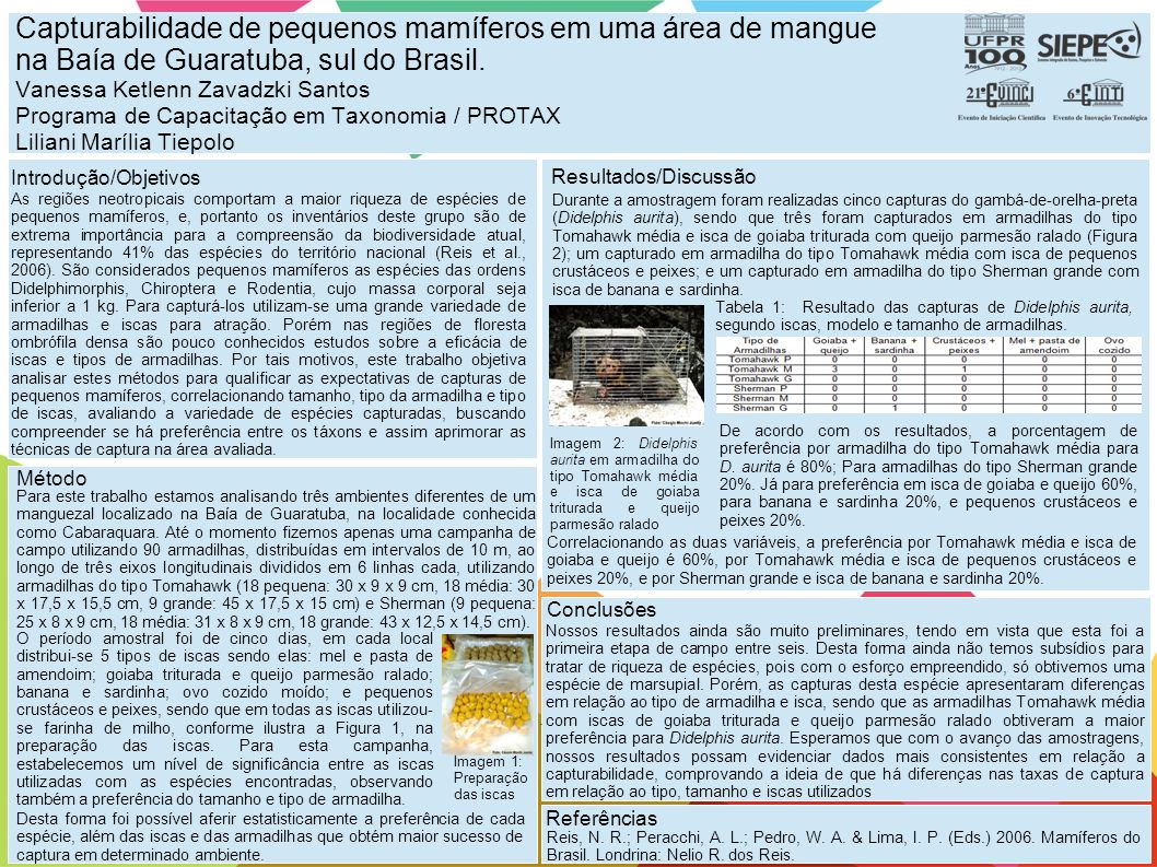 Capturabilidade de pequenos mamíferos em uma área de mangue na Baía de Guaratuba, sul do Brasil. Vanessa Ketlenn Zavadzki Santos Programa de Capacitaç